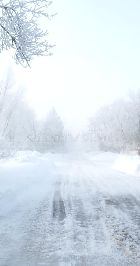 Foggy Frosted Winter Morning Drive royalty free stock images