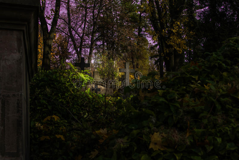 Foggy Graveyard at night. Old Spooky cemetery in moonlight through the trees royalty free stock photos
