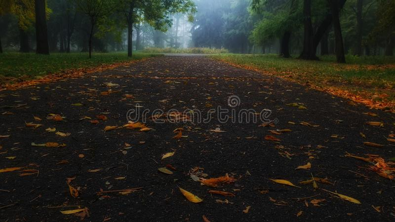 Foggy Highway to work royalty free stock photography