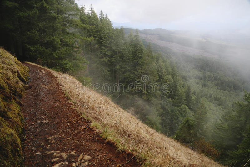 Foggy Hiking Trail stock photo