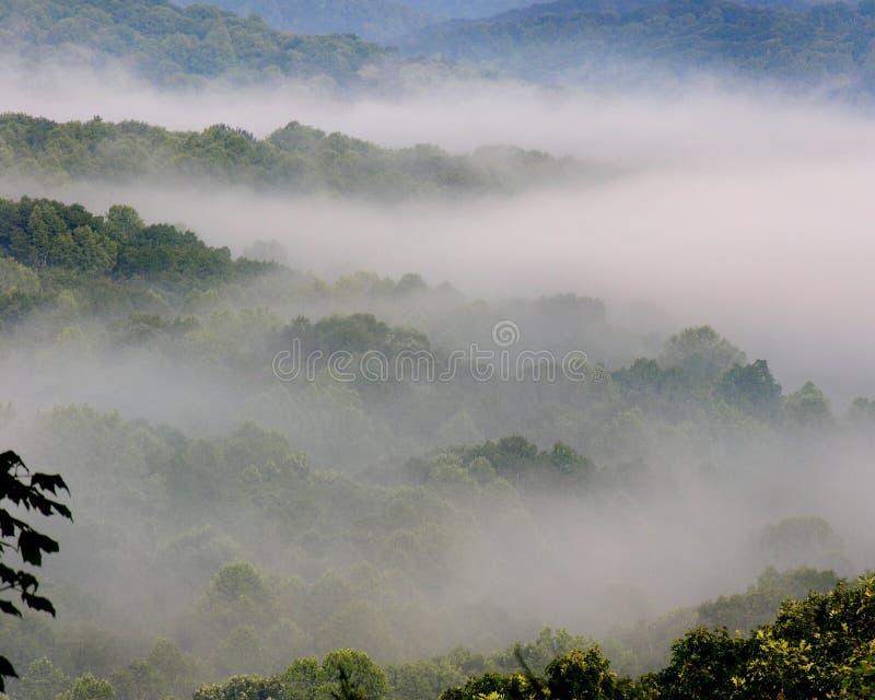 Foggy Hills stock photos