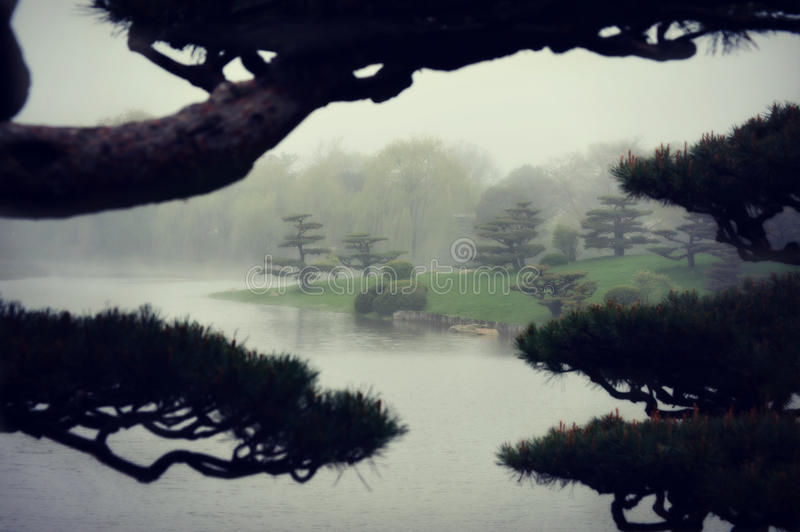 Foggy Japanese Garden. A Japanese Garden at the Chicago Botanic Garden on a foggy misty day by a lake with bonsai in the foreground stock images