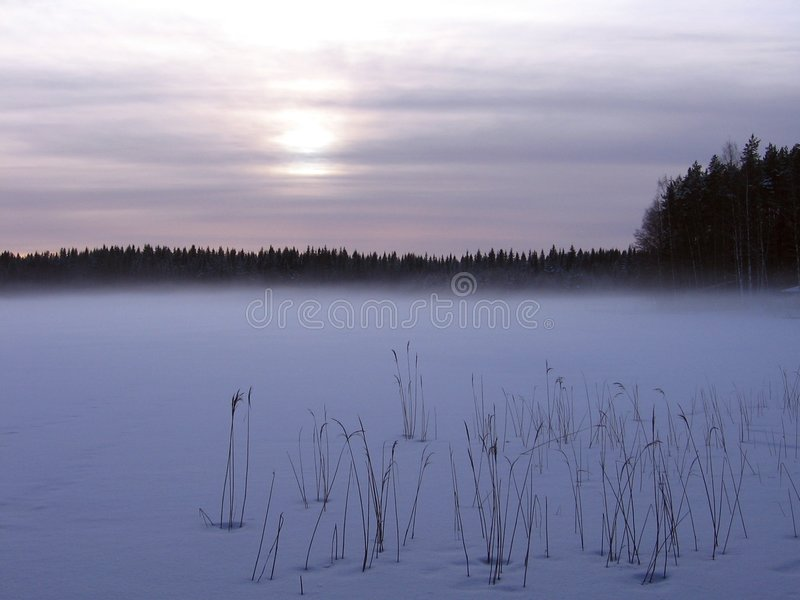 Foggy lake royalty free stock image