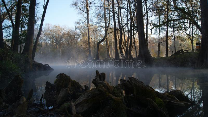 Foggy lake in the forest in the morning. Ginny Springs, Florida. USA autumn winter season. Foggy lake in the forest in the autumn winter morning. Ginny Springs royalty free stock image
