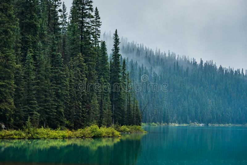 Foggy Lake Louise Lakeshore Trail royalty free stock photography