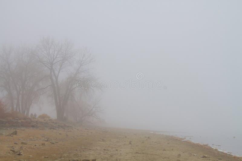 Foggy Lake Shoreline View Royalty Free Stock Image