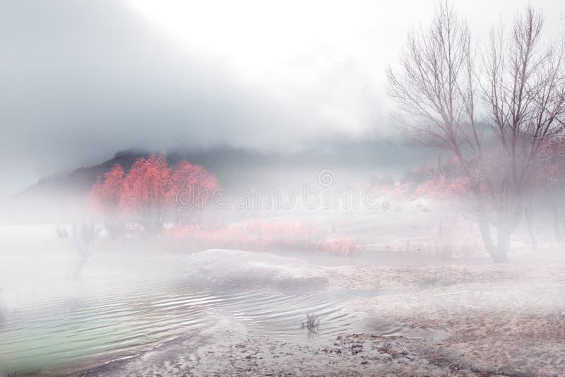 Download Foggy landscape stock image. Image of lake, environment - 18677397