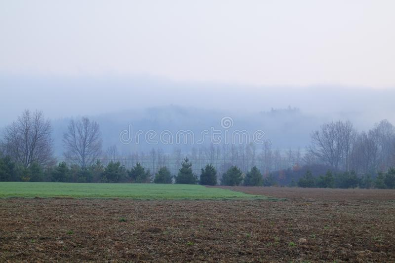 Foggy landscape royalty free stock image