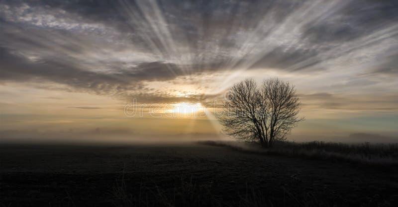 Foggy landscape stock images