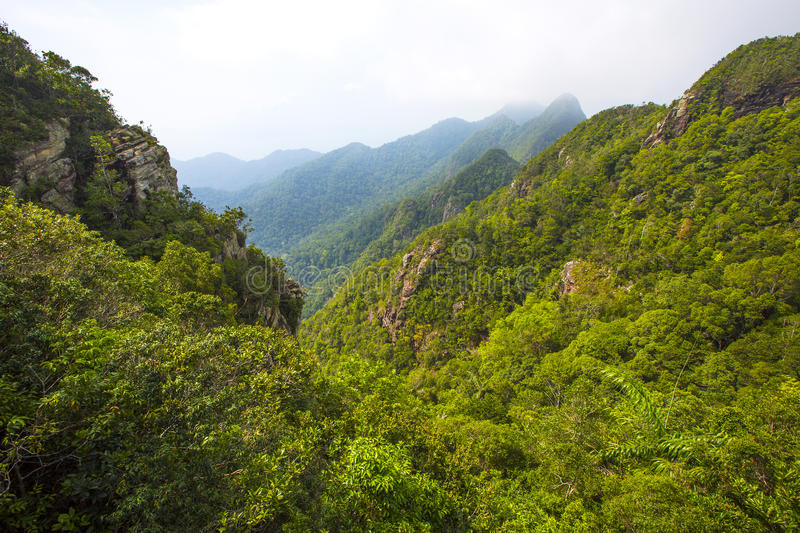 Foggy and lush mountain landscape at Langkawi in Malaysia. Drifting fog at the beautiful mountains in Langkawi, Malaysia royalty free stock photo
