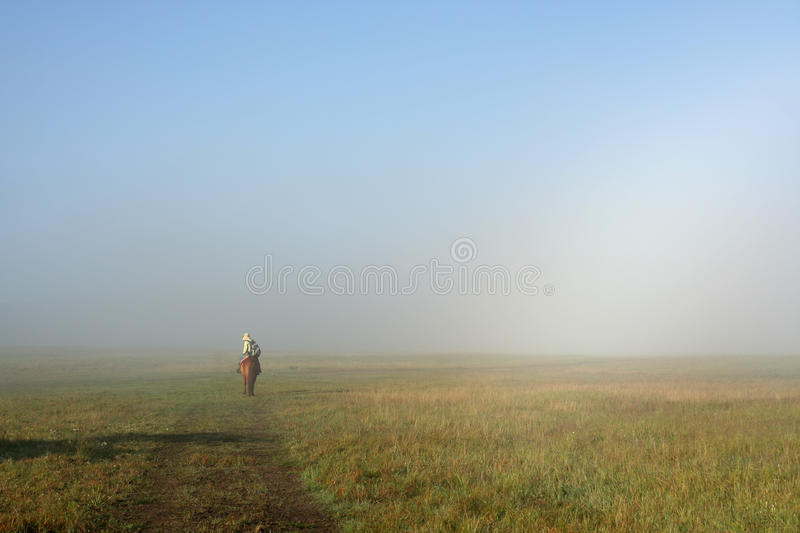 Foggy meadow stock photography