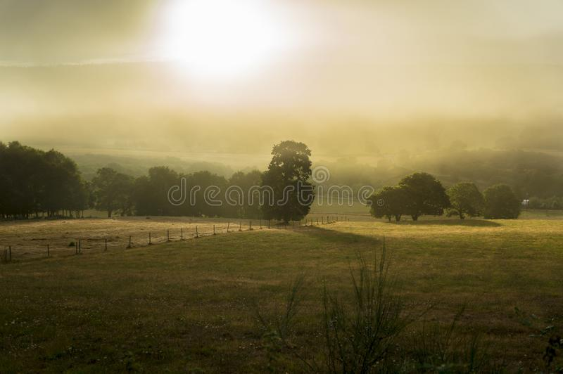 Foggy meadows in Galicia Spain stock photo
