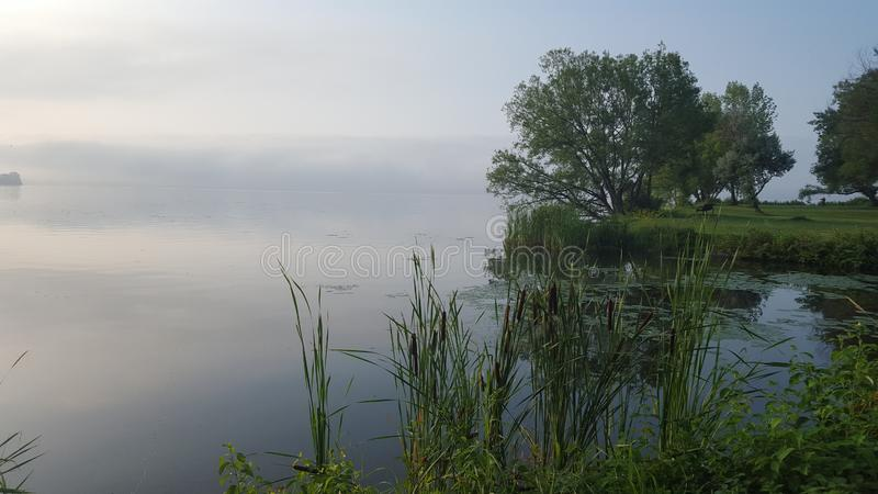 Foggy/Misty Lake i morgonen arkivbild