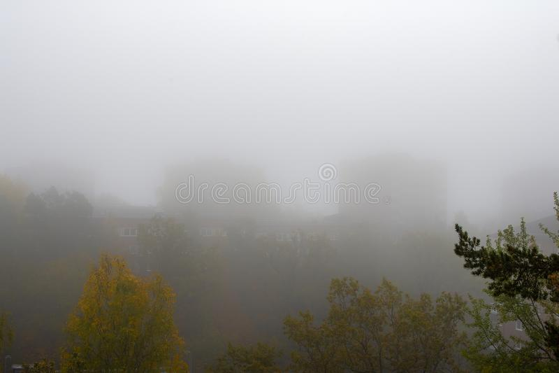 Foggy Morgengrauen im Herbst in einem Vorort stockfotos