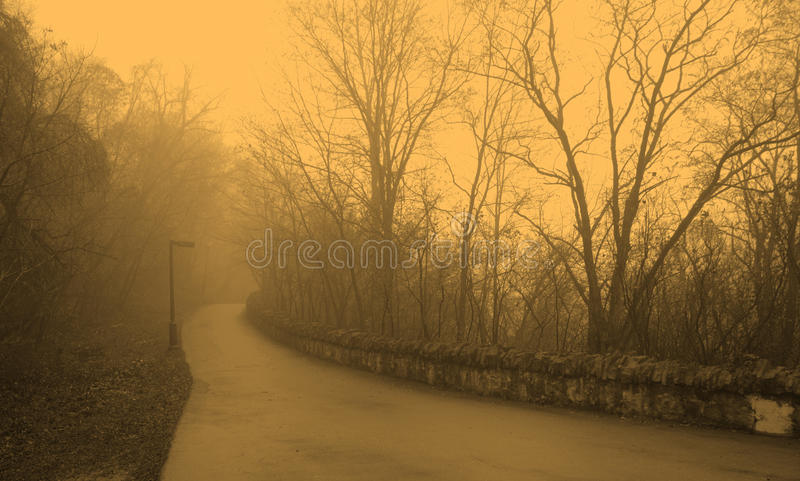 Foggy morning. Paved pathway along the edge of the Hamilton Escarpment (Canada), on an foggy morning royalty free stock photos