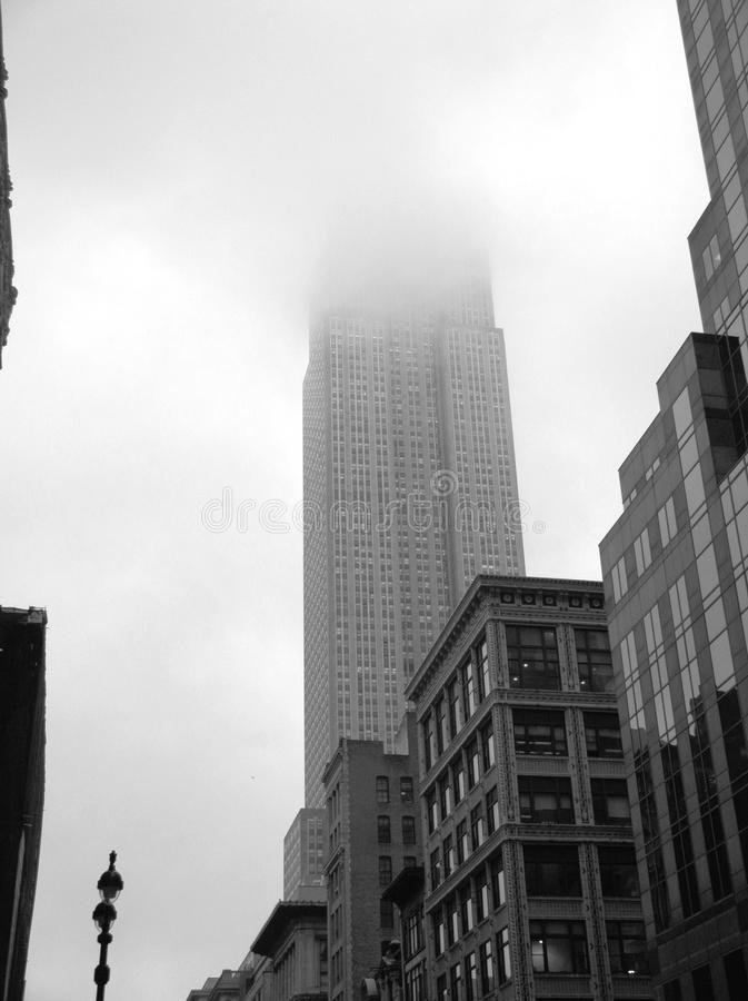 Download Foggy morning editorial photo. Image of fashionable, city - 24642596