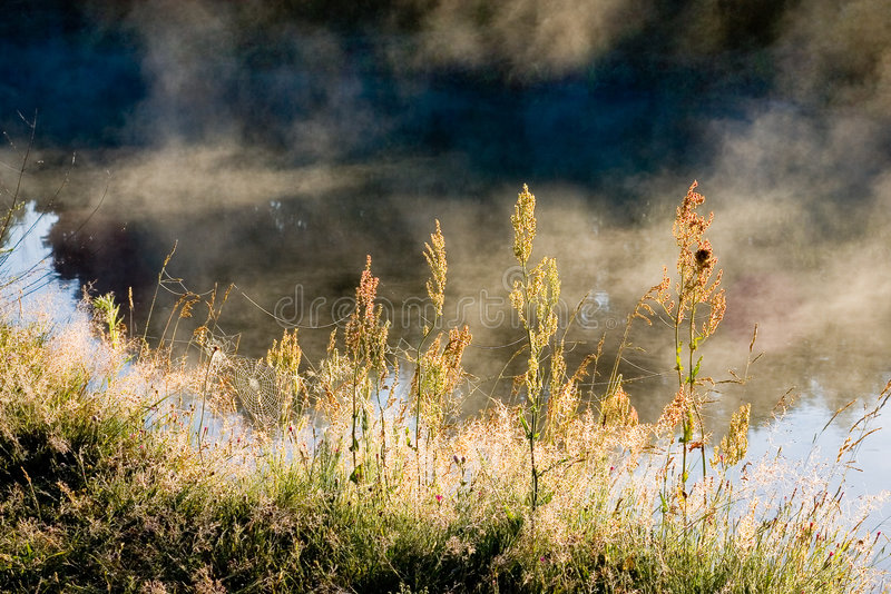 Foggy morning. On the river. A beautiful flying weather stock images