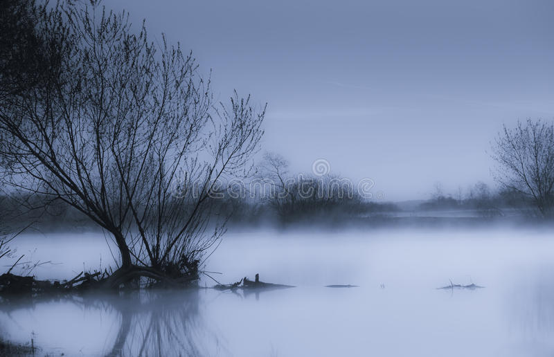 Download Foggy morning stock photo. Image of calm, tranquil, mist - 9482342