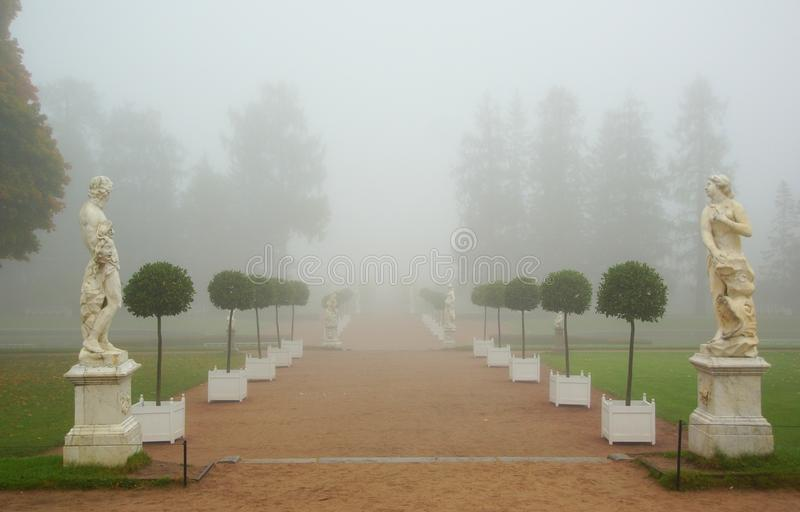 Foggy morning in the Catherine park royalty free stock photography