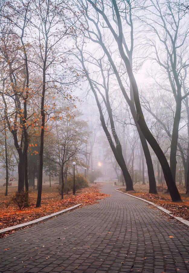 Foggy morning in city royalty free stock photos