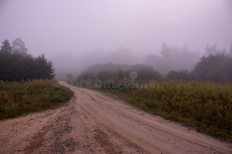 Foggy morning in countryside. Empty rural path in misty forest. Rustic autumn landscape. royalty free stock image