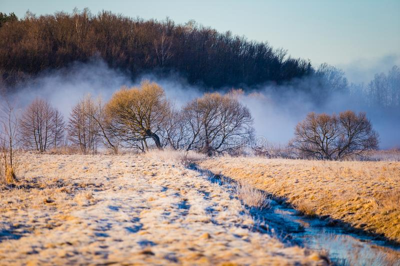 Foggy morning in countryside. Weather transition concept. Frost on dry grass. Foggy morning in the countryside. Weather transition concept. Frost on dry grass royalty free stock images