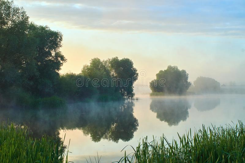 Foggy morning. Dawn outside the city. It will be a warm day. Morning fog on the lake.  stock photo