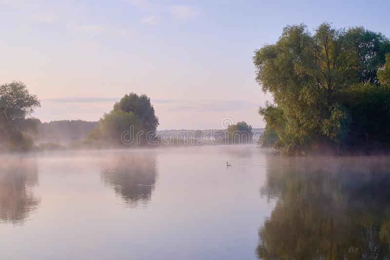 Foggy morning. Dawn outside the city. It will be a warm day. Morning fog on the lake.  stock image