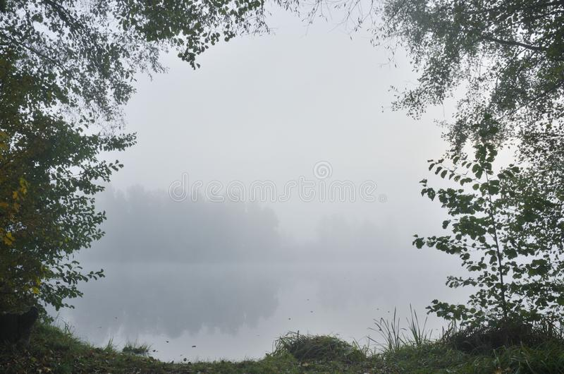 Foggy morning at the lake royalty free stock photography