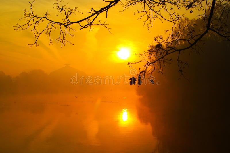 Foggy morning over the lake, fall trees reflected in water.  royalty free stock image