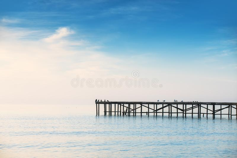 Foggy morning over the sea. Seagulls standing at old broken bridge in the water. royalty free stock photography