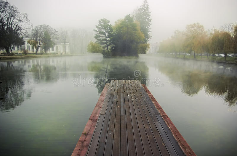 Foggy morning. At a small lake in a park