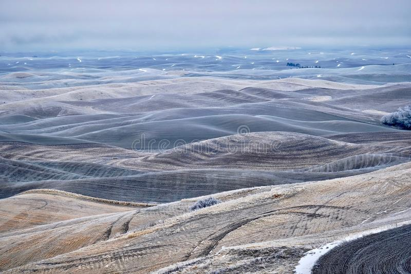 Rolling hills covered with frost and snow in winter. Foggy morning soft light on the farmlands in Palouse, agricultural area in southeast Washington. Abstract stock photos