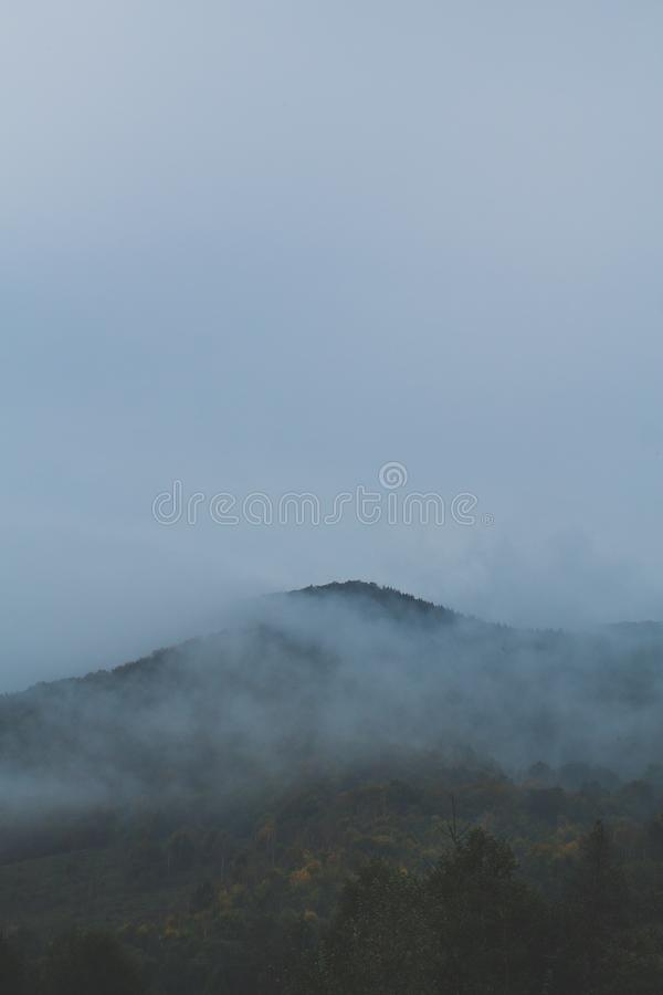 Foggy mountain with a colourful forest and blue sky royalty free stock images