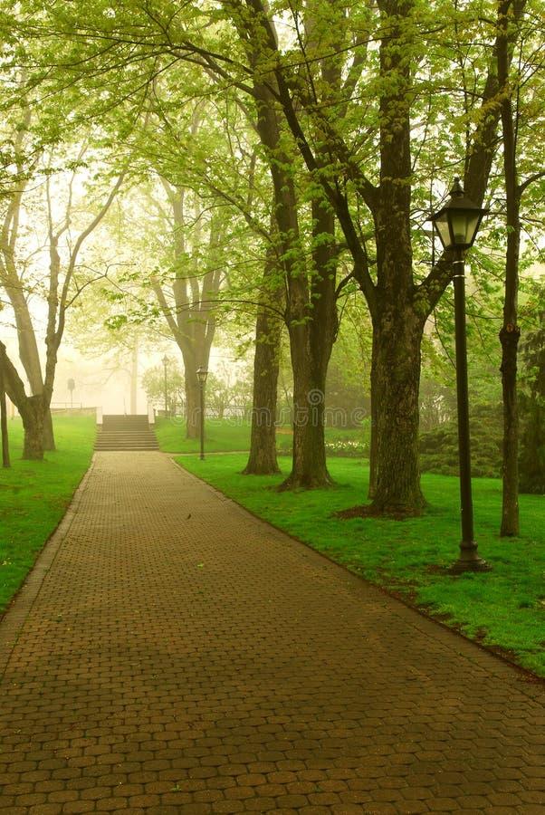 Foggy park royalty free stock photo