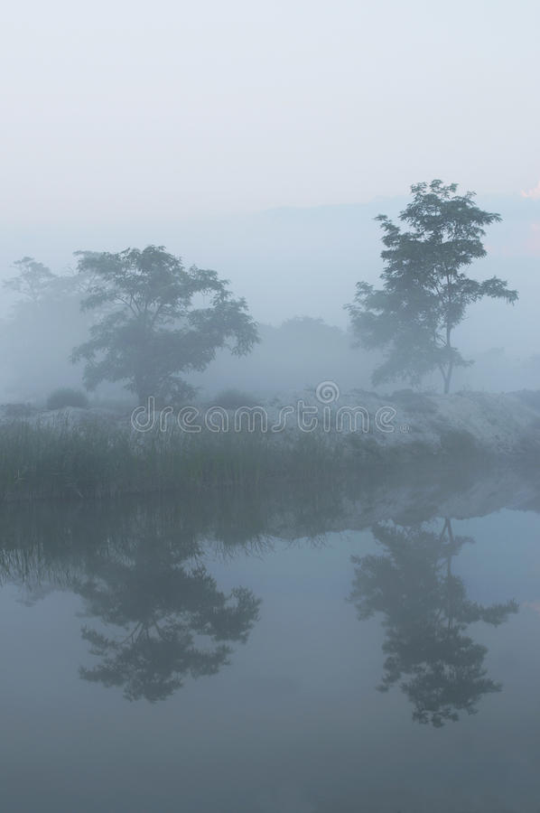 Foggy river-bank royalty free stock photos