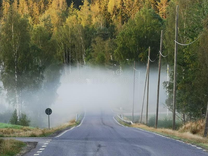 Foggy road, danger ahead royalty free stock images