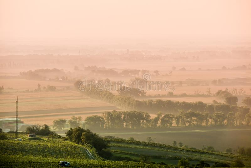 Foggy road in Moravia. Road in Moravia, Czech Republic in fog morning with sun stock image