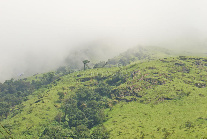Foggy scenic hill top royalty free stock image