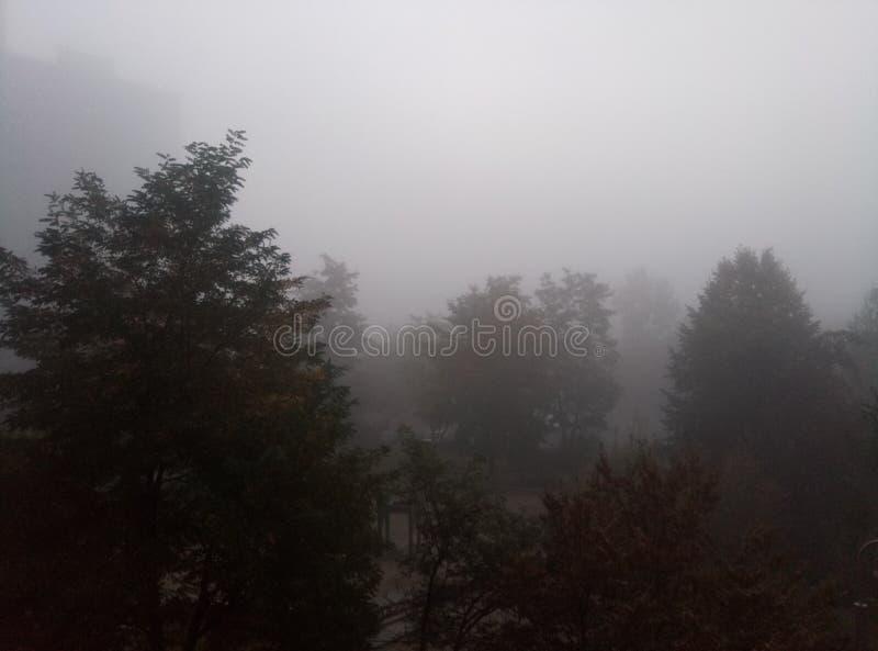 Foggy sky before the rain royalty free stock image
