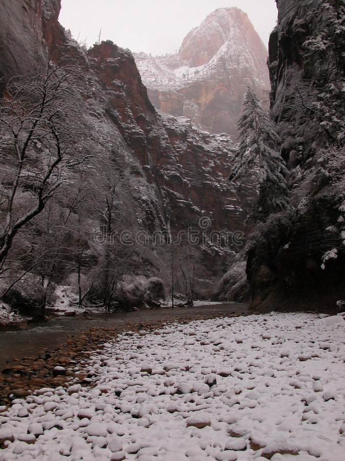 Download Foggy And Snowy Zion Narrows Stock Image - Image of snow, narrows: 165361