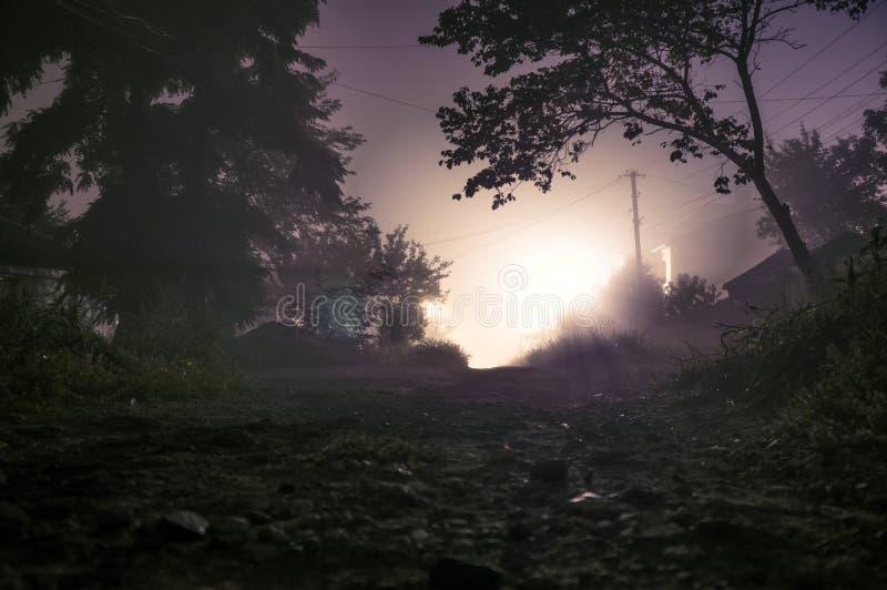 Foggy street lights misty stock photos