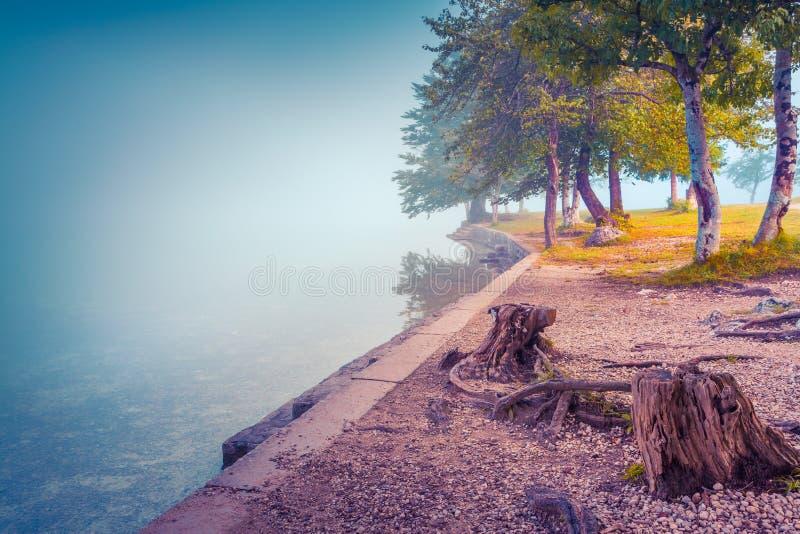 Foggy summer morning on the Bohinj lake. In Triglav national park Slovenia, Julian Alps, Europe. instagram toning stock photo