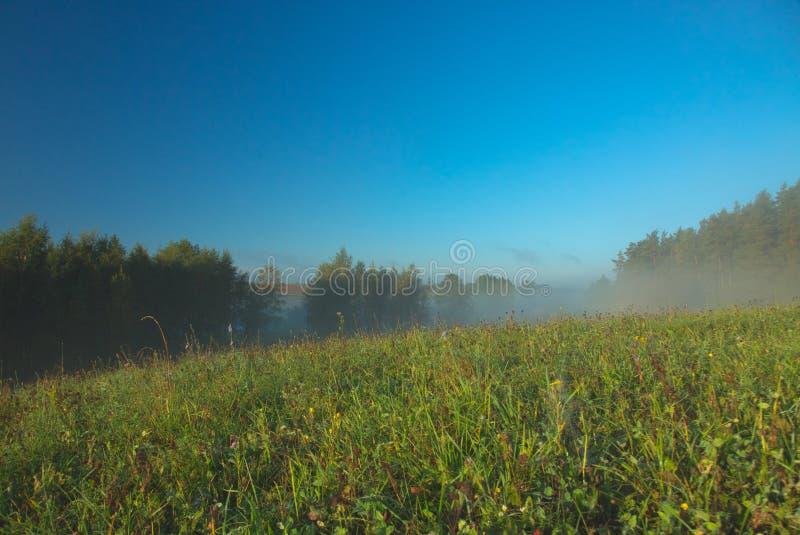 A foggy, sunny, beautiful autumnal morning stock photos