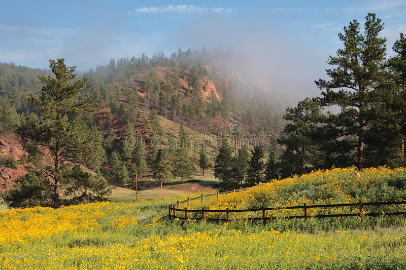 Foggy Sunrise in the Colorado Rocky Mountains stock images