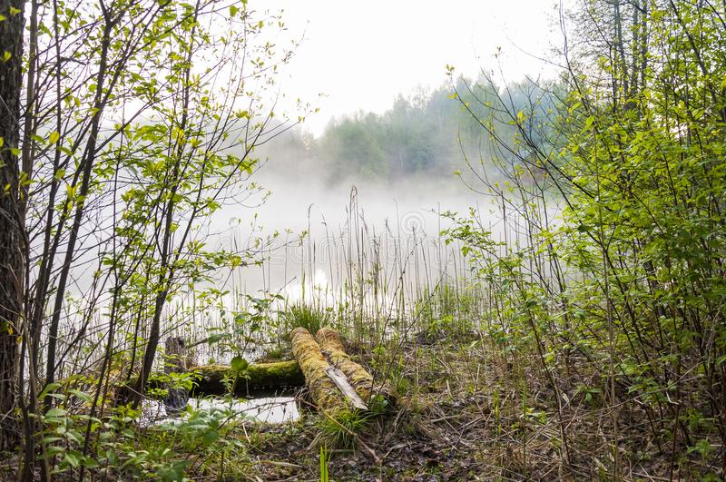 Foggy sunrise on forest lake and ancient traditional village cooler invention stock image