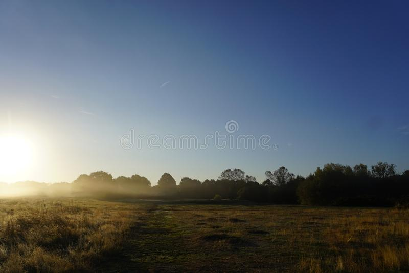 Foggy Sunrise in the Meadow. Shows a foggy sunrise background in the glass land meadow with blues skies royalty free stock photo