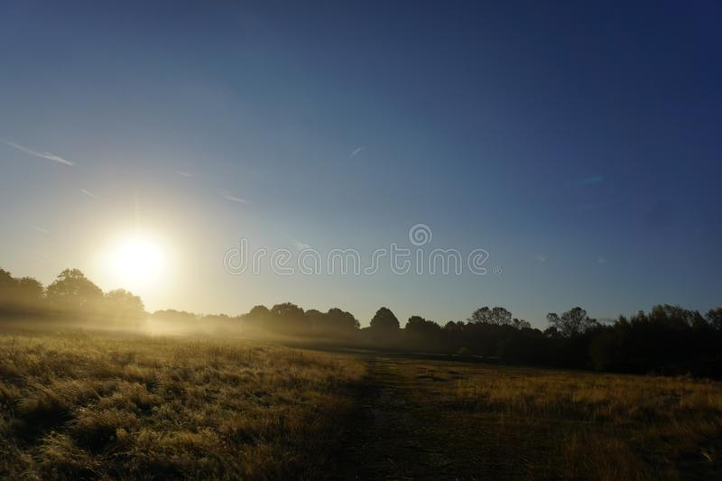 Foggy Sunrise in the Meadow. Shows a foggy sunrise background in the glass land meadow with blues skies stock images