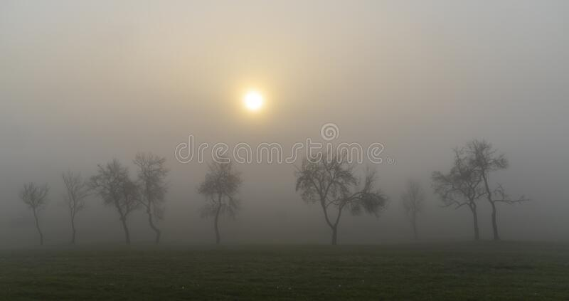 Foggy sunrise in northern Hungary royalty free stock image