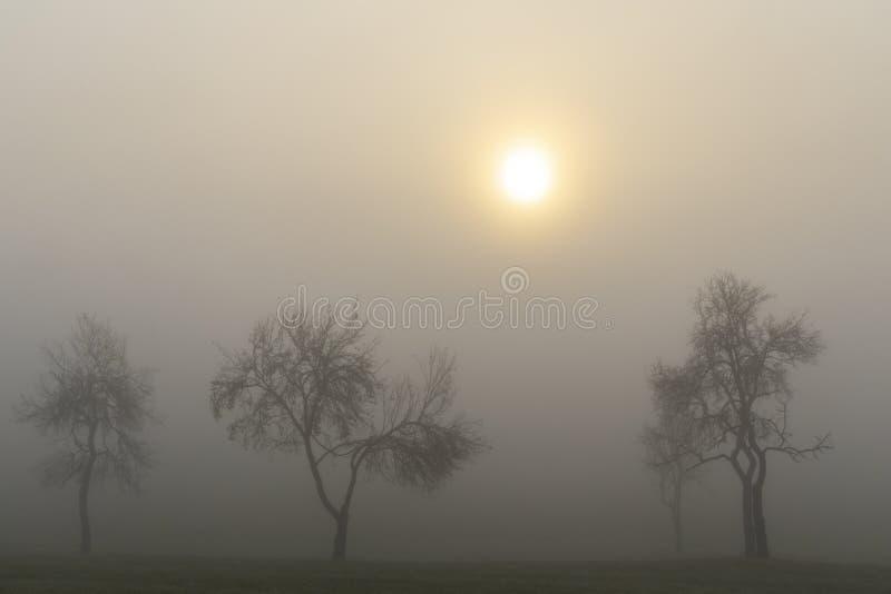 Foggy sunrise in northern Hungary stock photos